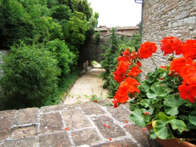 visita_di_gubbio_20090628_1459539026
